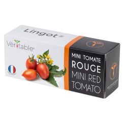 Lingot de mini tomate rouge
