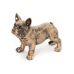 Bulldog Yuki Or 62 cm