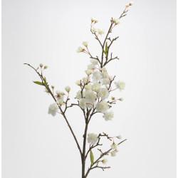 Cerisier royal 122cm blanc