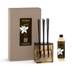 Bouquet parfumé Triptyque...