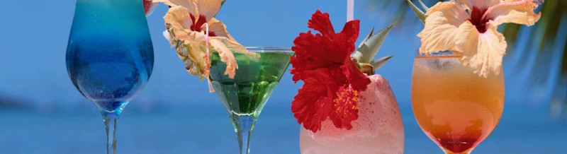 préparations pour boissons