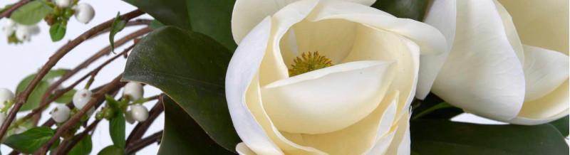 fleurs à l'unité